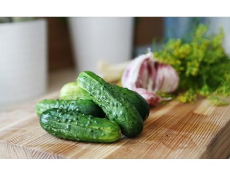 Огірки: ранні, смачні, врожайні