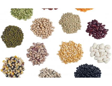 Методика розрахунку кількості насіневого і посадкового матеріалу