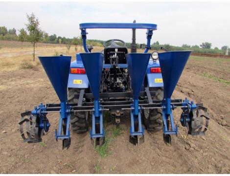 Технология и схемы выращивания луковичных культур