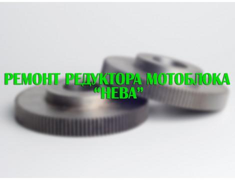"Ремонт редуктора мотоблока ""Нева"" (частина 1)"