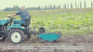 Сбор урожая транспортерной картофелекопалкой, трактор Скаут-12 (часть 2)